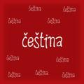 cestina120